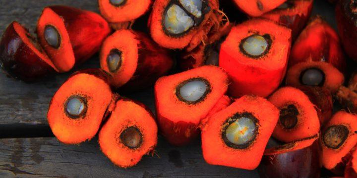 Miks kasutatakse Eesti küpsistes palmiõli ja kas saaks ka ilma?